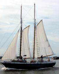 posts_4573865-sailboat_004Medium.jpg